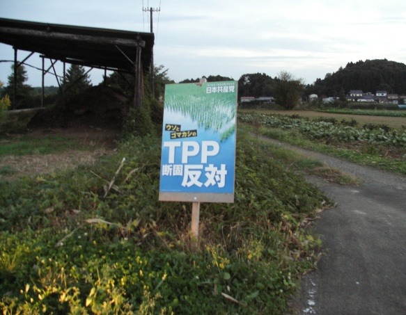 inaka_photo_201610-2
